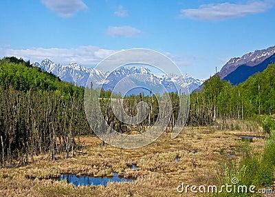 Alaskan Wilderness Stock Image  Image: 20333271