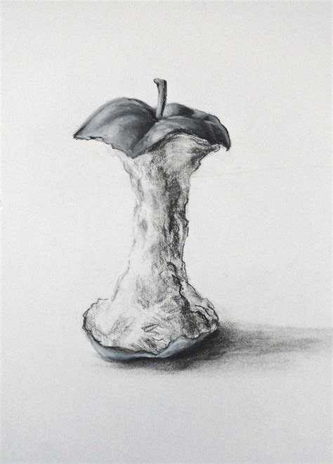 drawing apple ideas  pinterest apple sketch