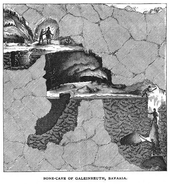 The Bone-Cave