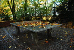 Ping Pong by askeStick