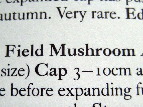 Field mushroom text