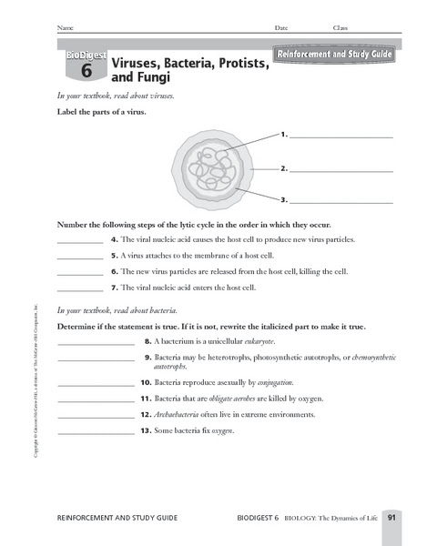Printables. Virus Worksheet. Mywcct Thousands of Printable Activities