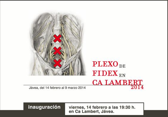 FIDEX PLEXO