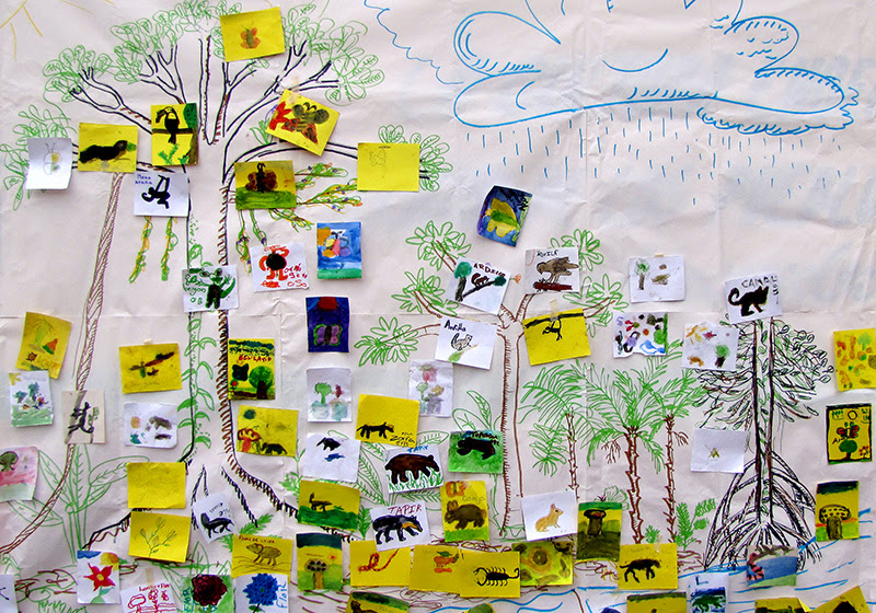 Dibujos Para Colorear De La Selva Lacandona Dibujos Para Colorear