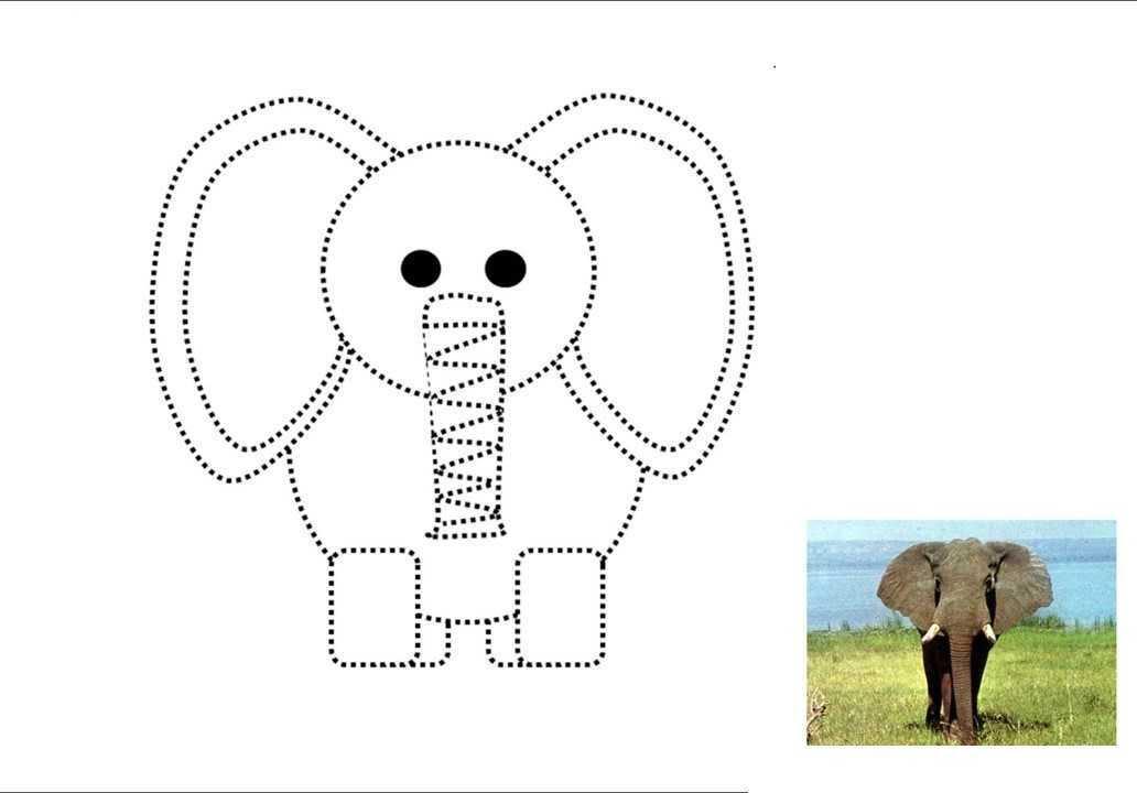 Okul Oncesi Cizgi Ve Boyama Sayfasi Hayvanlar 12 Okul öncesi