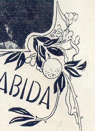 Illustração Portugueza, No. 152, January 18 1909 - 25a
