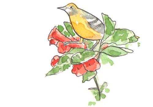 birdsnacks1_rev_w