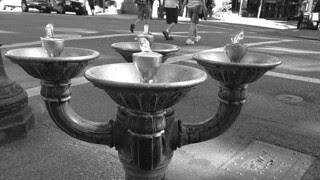 Portland - Fountains