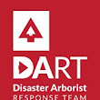 Dart International UK