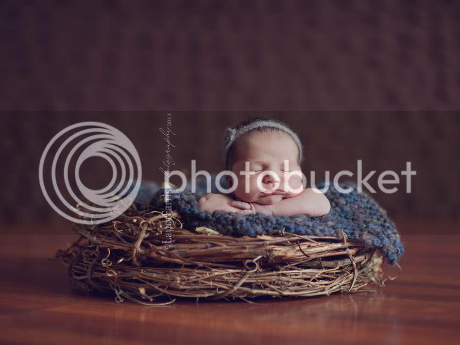 Boise newborn photgrapher