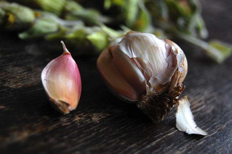 garlic immunity Eating when youre sick: Should you feed a cold? Or starve a fever?