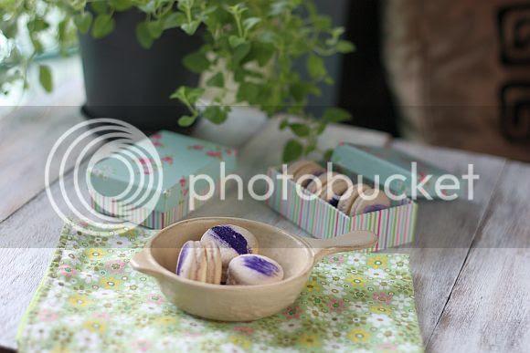 lavendermac1_zpsa9dbbcfa