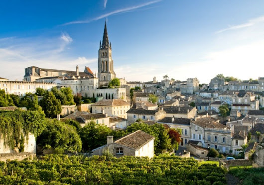 Bordeaux on track for 'best vintage since 2010'