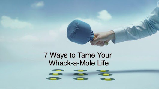 7 Ways to Tame a Whack-A-Mole Life