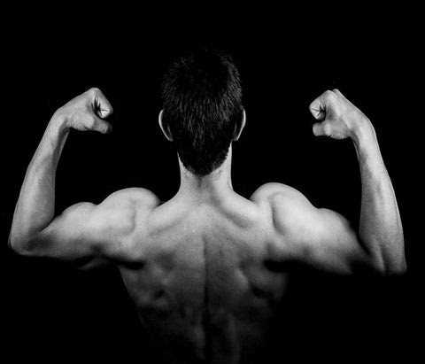 Benefits of Acetyl-L-Carnitine for Athletes