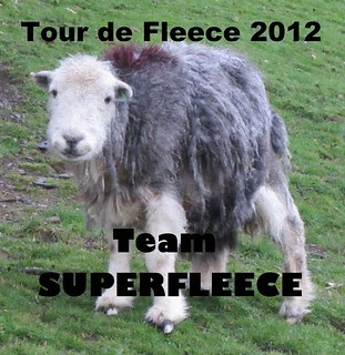 Tour de Fleece Herdwick