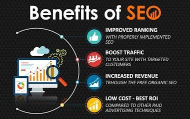 Professional SEO Services Provider!