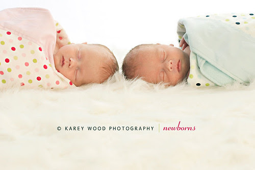 twins by Karey Wood