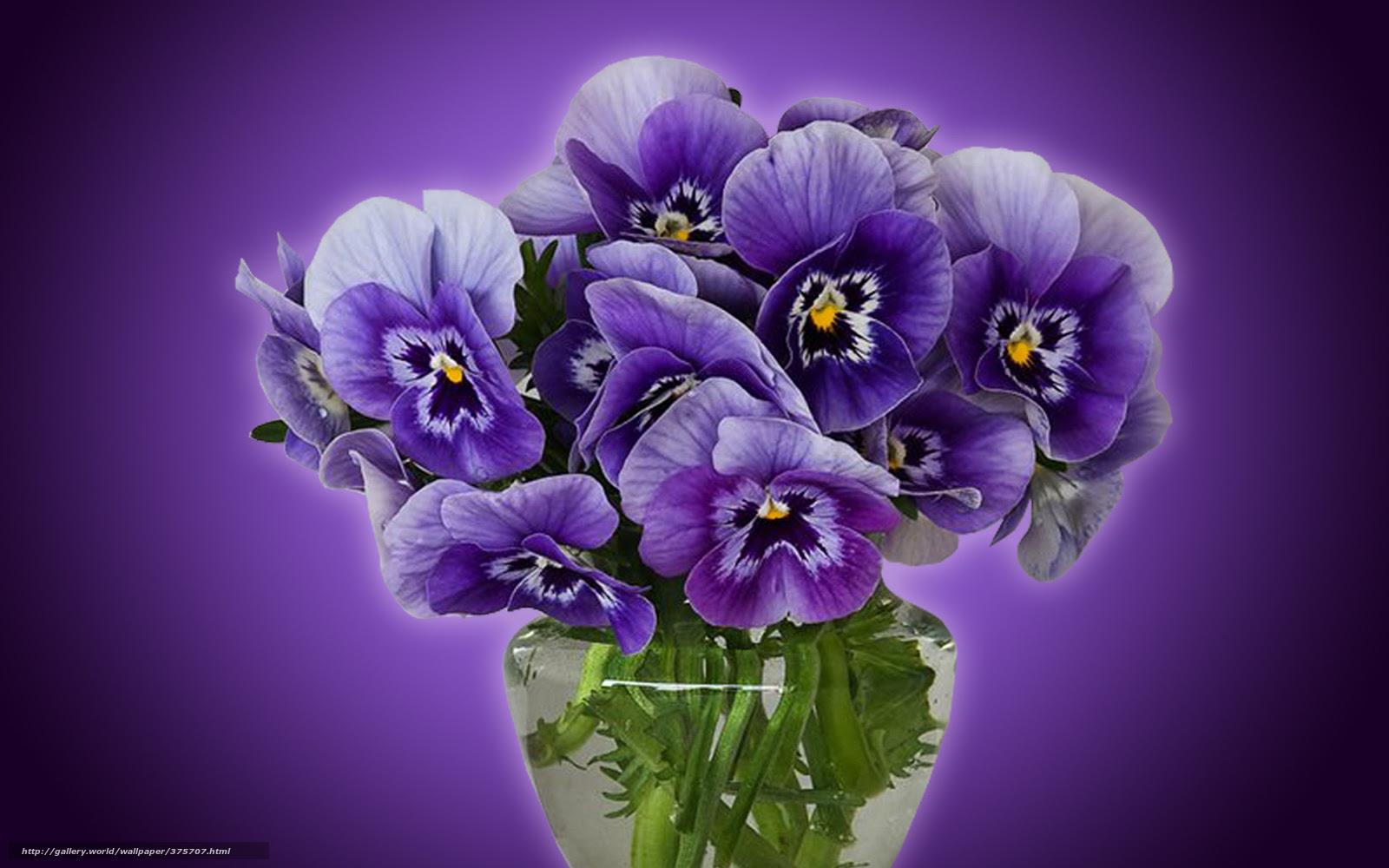 375707_pense_fond violet_vase avec de leau_bouquet_1680x1050_www