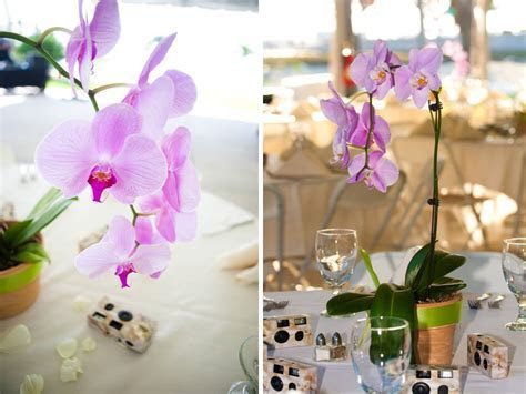 Orchid Wedding Centerpieces   Car Interior Design