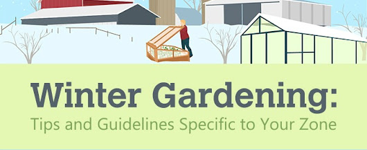 Winter Gardening Tips for Your Zone - ADK Farmer Dan