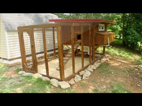 Chicken Coop Kits: Why Go For DIY Chicken Coop Kits?