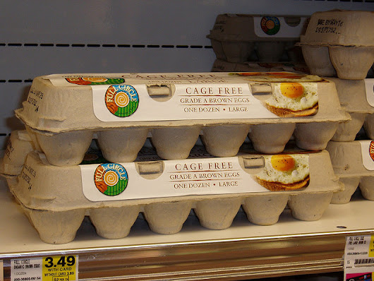 Will More Restaurants Offer Cage-Free Eggs Soon? - Menuism Dining Blog