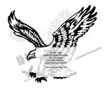 Eagle Scrollsaw Silhouette Yard Art Woodworking Pattern - fee plans from WoodworkersWorkshop® Online Store - eagles,birds,yard art,painting wood crafts,scrollsawing patterns,drawings,plywood,plywoodworking plans,woodworkers projects,workshop blueprints