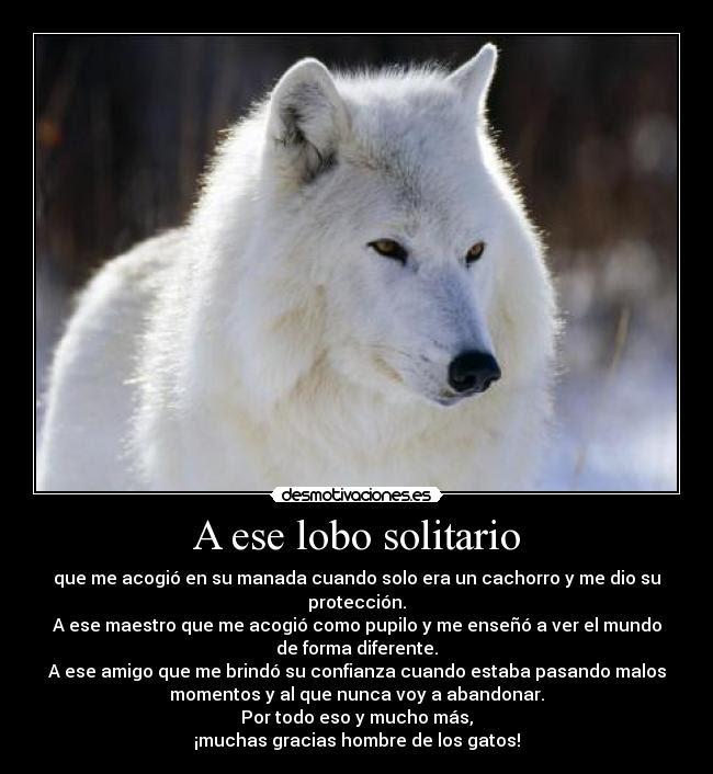 A Ese Lobo Solitario Desmotivaciones