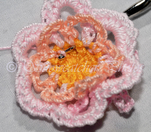 1 double crochet around post of Round 1 double crochet at bottom middle of next single crochet petal