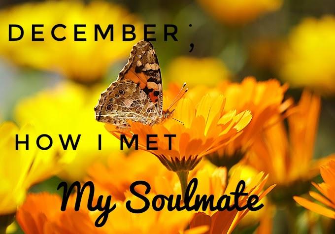 December: How I Met My Soulmate