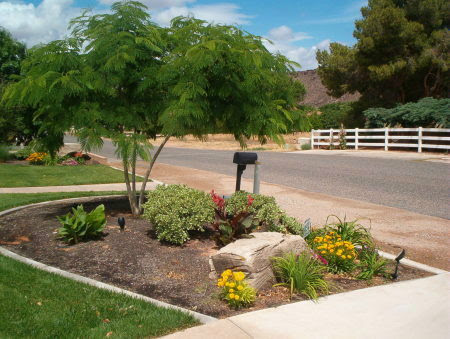 front yard landscaping photos. desert front yard landscaping