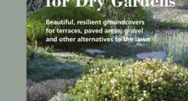 Planting Design For Dry Gardens Archives Irish Garden Plant Society