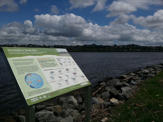"""Shorebirds of the Tweed"" signage at Chinderah Bay"
