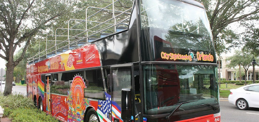 An Open-Top Bus Tour? Why Not!