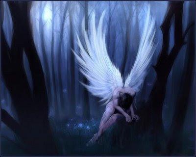 http://olympiada.files.wordpress.com/2010/11/cry-angel.jpg?w=400&h=320