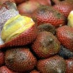 Paratungon: An underutilized fruit with great economic potential