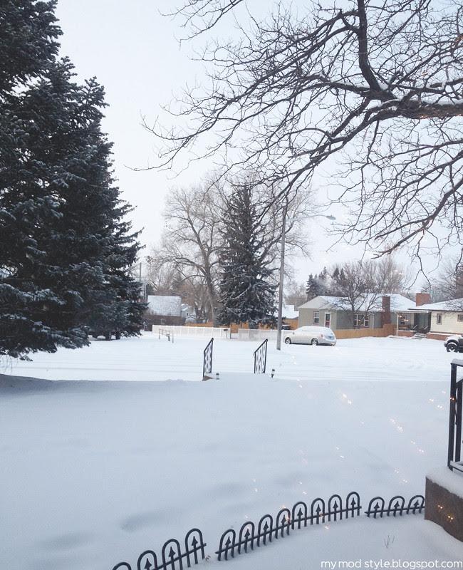 Snow Front Yard