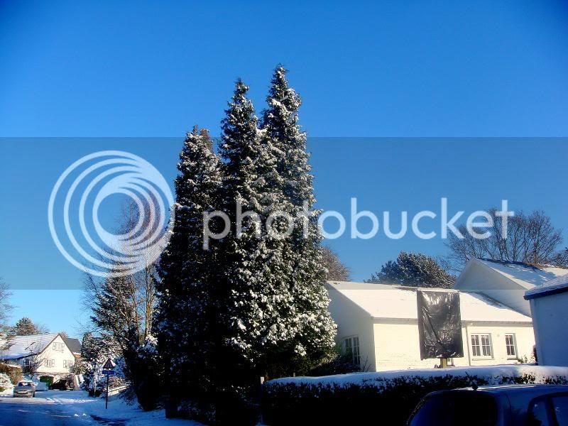 Locus house