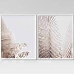 "(Set of 2) 24"" x 30"" Palms Framed Wall Art - Project 62"