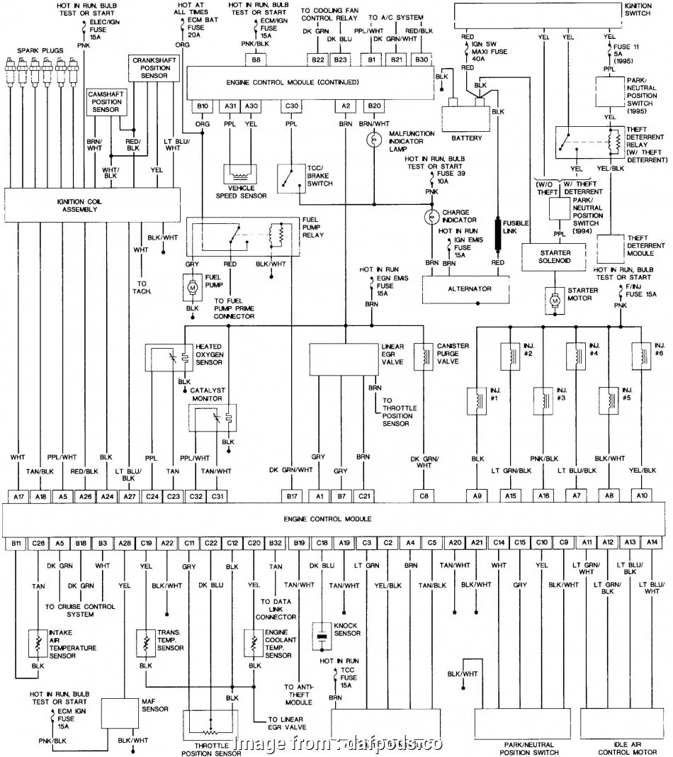 Diagram 1995 Jeep Grand Cherokee Infinity Stereo Wiring Diagram Full Version Hd Quality Wiring Diagram Diagramellief Ca Couture Lyon Et Region Fr