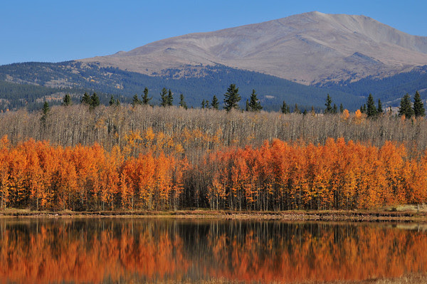 Autumn color near Kenosha Pass