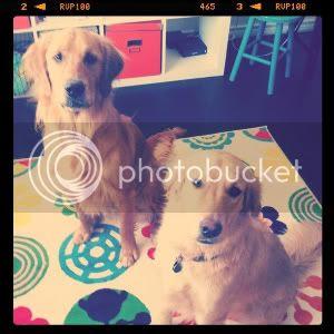 Eli & Milly.