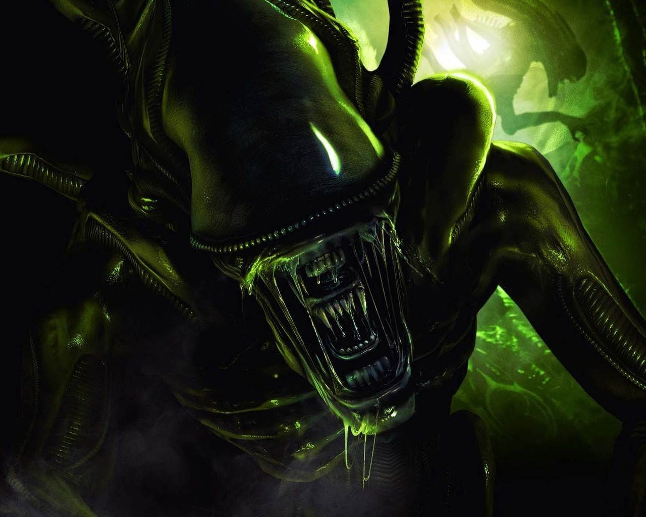 Alien From Alien Vs Predator Wallpaper From Dark Wallpapers