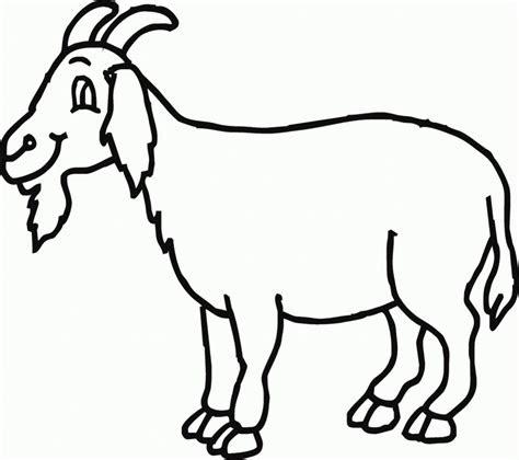 simak gambar kartun kambing  heboh kumpulan gambar
