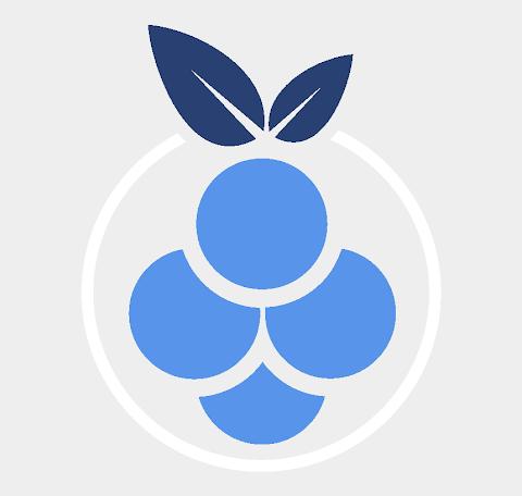 Blue Raspberry Logo