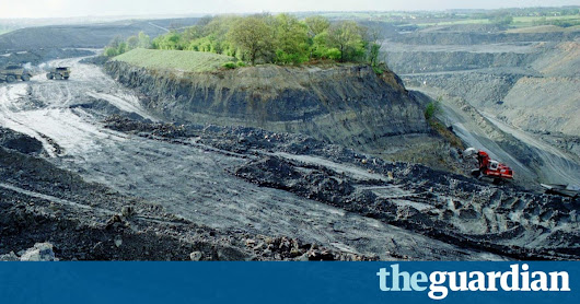 How millions of trees brought a broken landscape back to life | Environment | The Guardian
