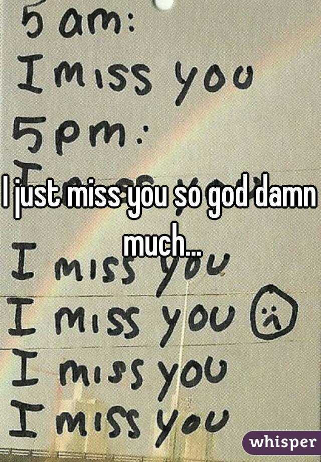 I Just Miss You So God Damn Much