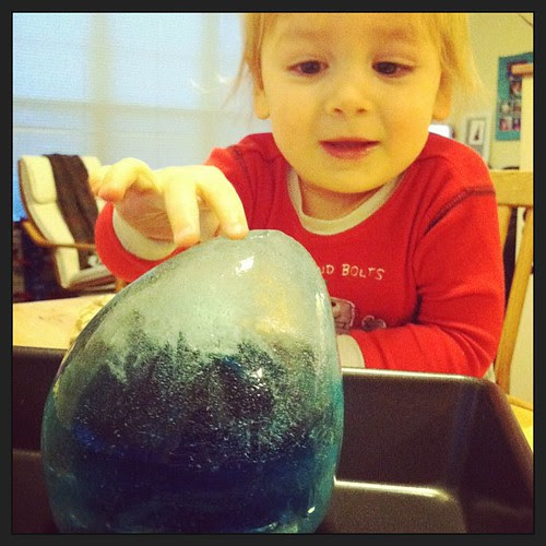 We froze water in another balloon. D is loving this little project.