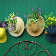 Dollar Store Crafts » Blog Archive » Make Hat Planters